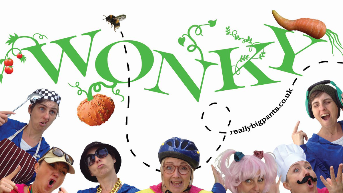 People in fancy dress pose silly under the wording 'wonky'